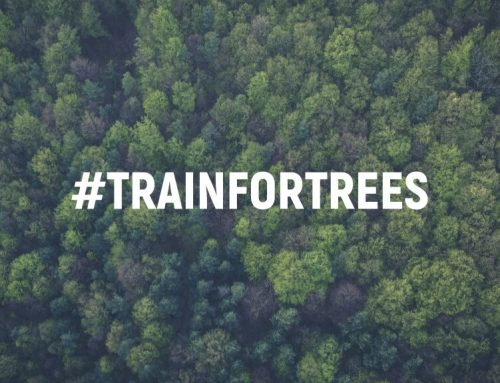 #TrainForTrees: A worldwide competition to burn calories for #TeamTrees